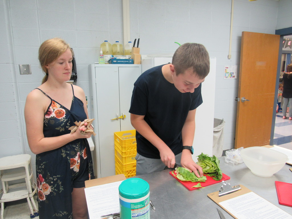 Students used lettuce to analyze the spread of germs.