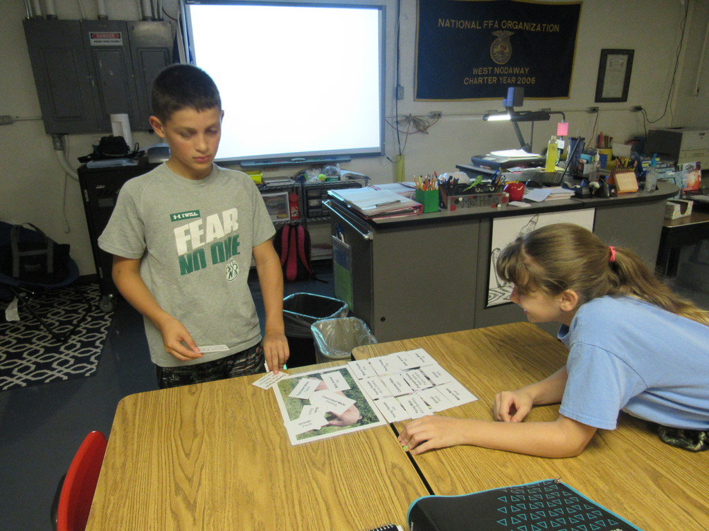Middle School Agriculture students are learning about the correct terminology to use when identifying livestock and specialty animals.